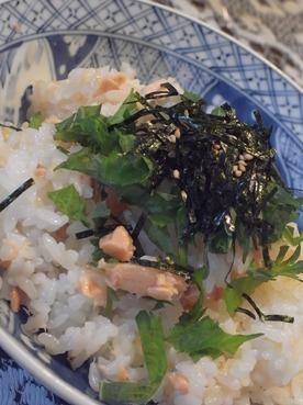 sakesushi