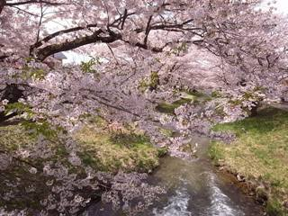 kannoujigawa