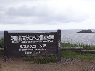 R0038857.JPG